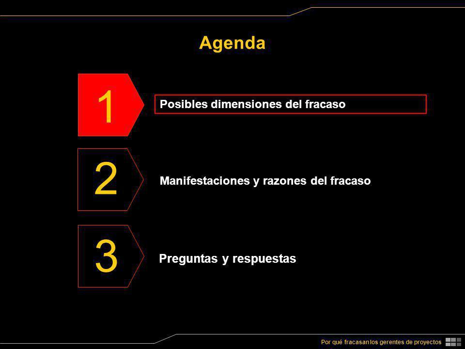 1 Manifestaciones y razones del fracaso 2 Preguntas y respuestas 3 Por qué fracasan los gerentes de proyectos Agenda Posibles dimensiones del fracaso