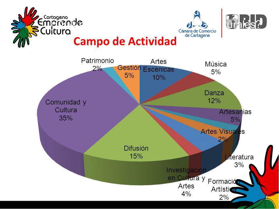 Campo de actividad: ¿Qué actividad realizan las ONG culturales? Campo de Actividad