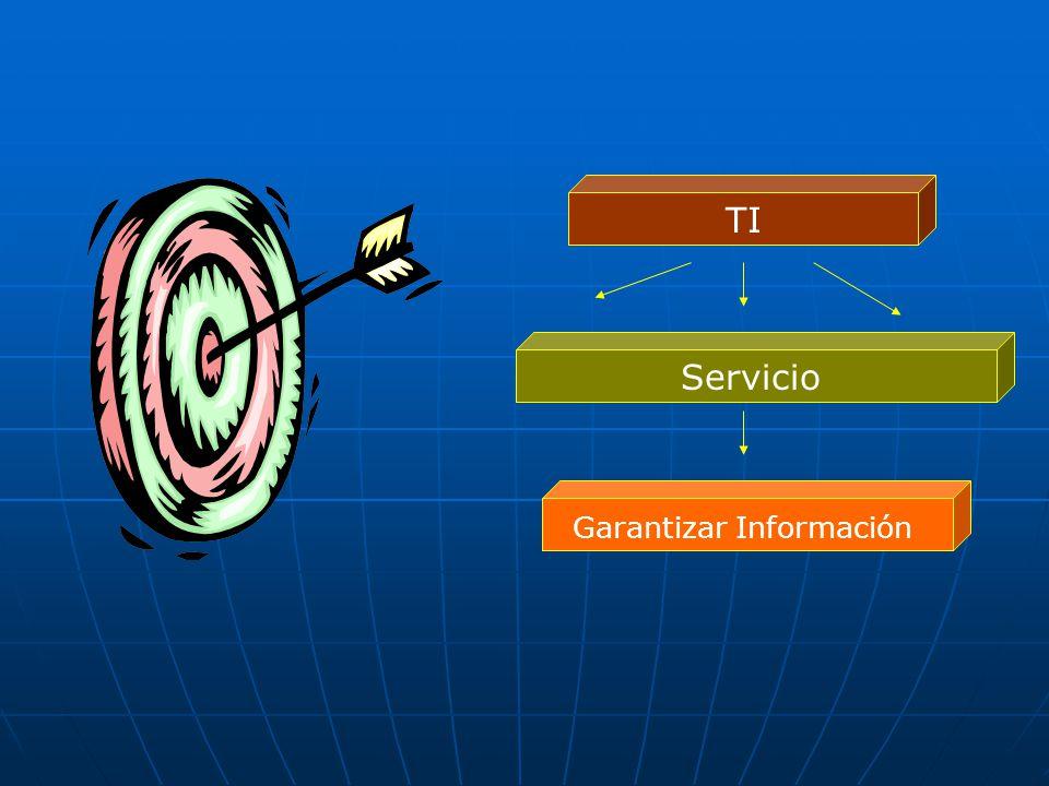 TI Servicio Garantizar Información