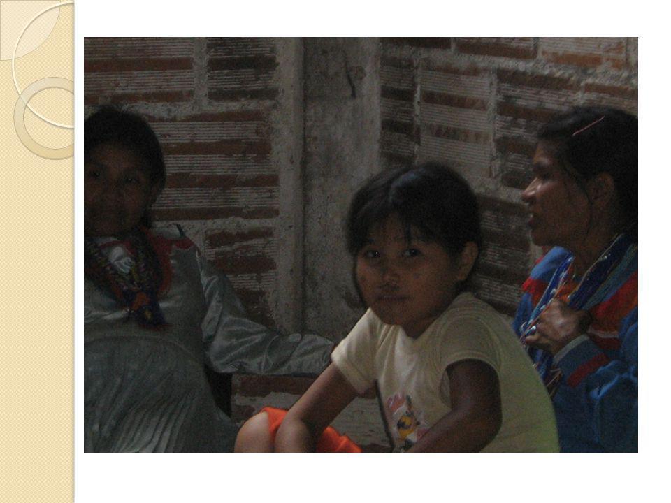 PLAN DE TRABAJO ANUAL 2009 ALCANCES ESPERADOS Primero: El nivel central y territorial ha fortalecido la coordinación interinstitucional para la promoción de los derechos de las mujeres emberá.