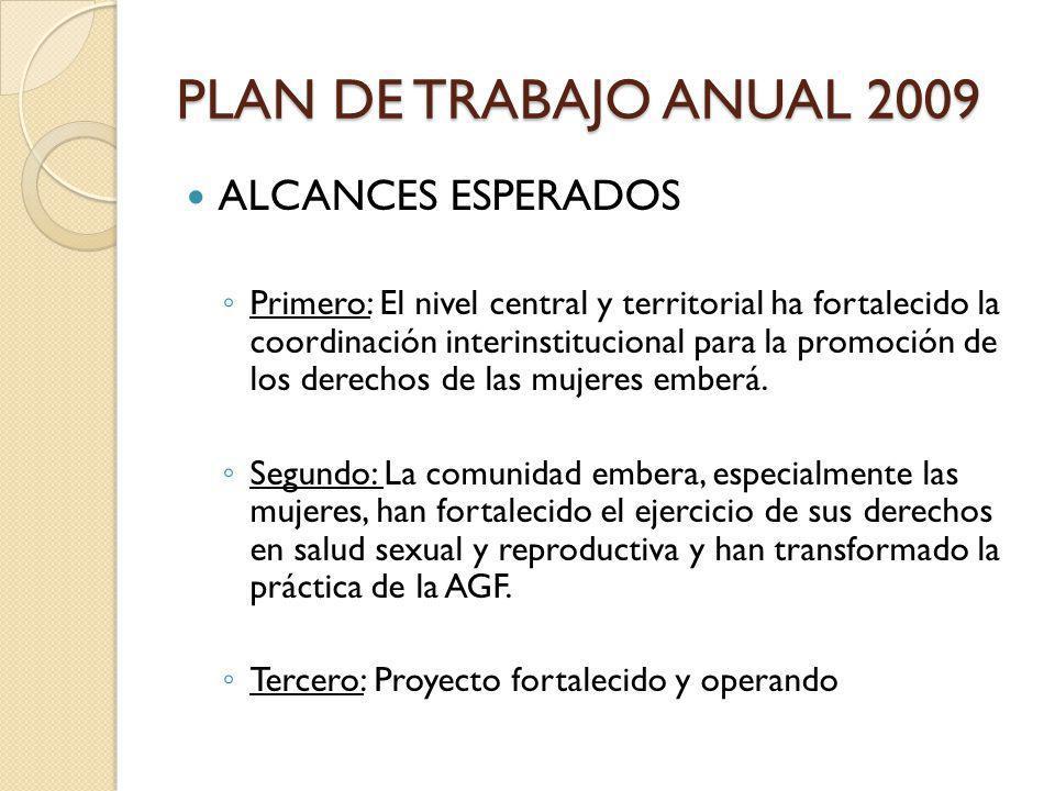 PAT- 2009: ACTIVIDADES Y PORCENTAJE DE EJECUCIÓN ALCANCEACTIVIDADES% DE EJECUCIÓN AJUSTES 1.