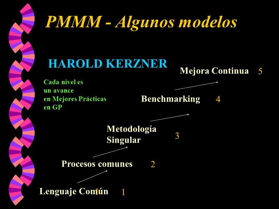 PMMM - Algunos modelos Lenguaje Común Procesos comunes Metodología Singular Benchmarking Mejora Continua HAROLD KERZNER Cada nivel es un avance en Mejores Prácticas en GP 1 2 3 4 5 1