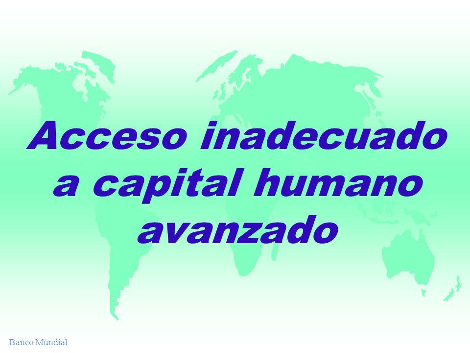 Banco Mundial Acceso inadecuado a capital humano avanzado