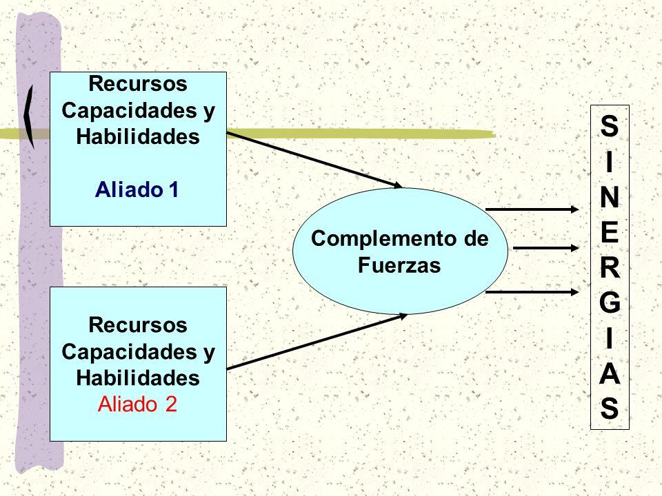 Recursos Capacidades y Habilidades Aliado 1 Recursos Capacidades y Habilidades Aliado 2 Complemento de Fuerzas SINERGIASSINERGIAS