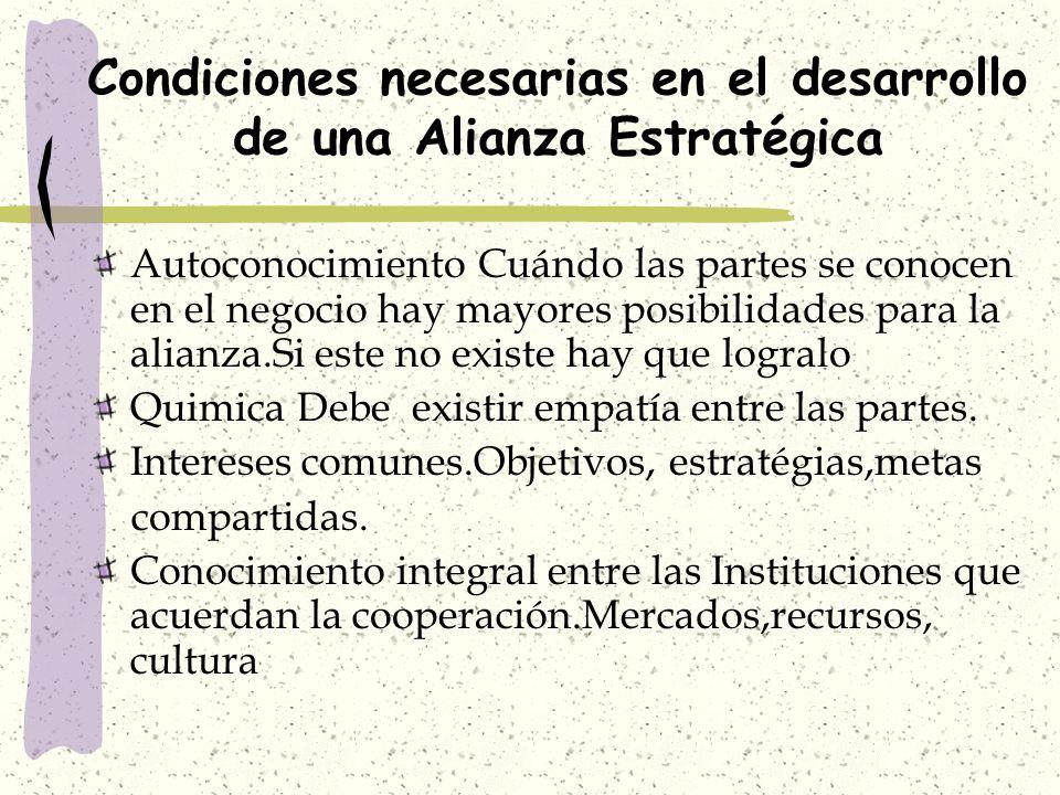 PROBLEMAS OPERATIVOS Definición de reglas roles, procedimientos y sistemas de decisión que facilten el desarrollo de la Alianza