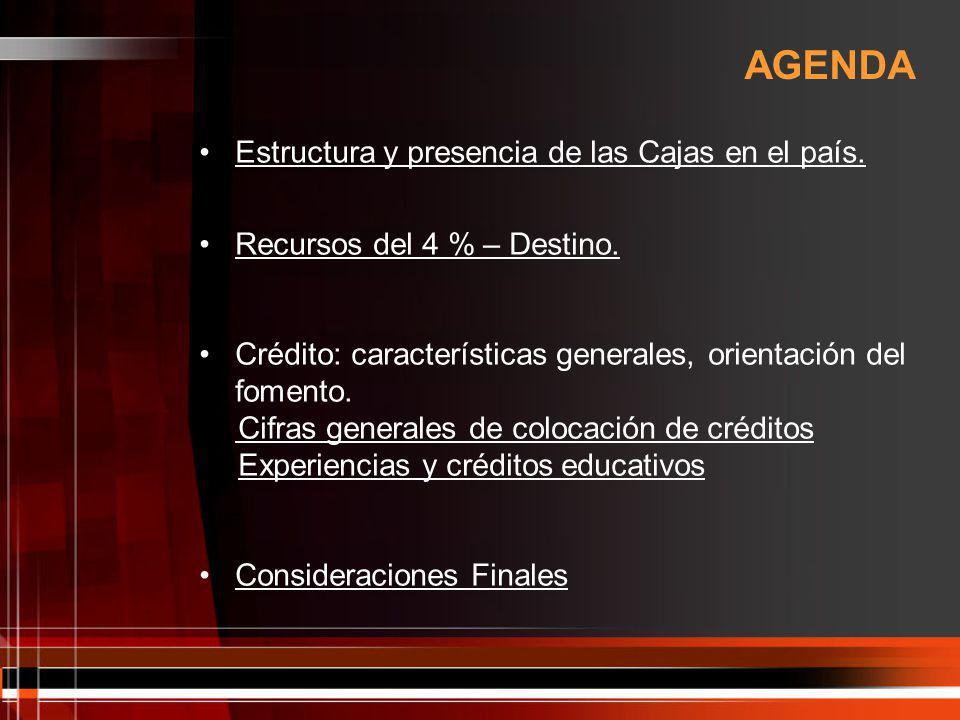 ESTRUCTURA Y PRESENCIA DE LAS CAJAS EN EL PAÍS