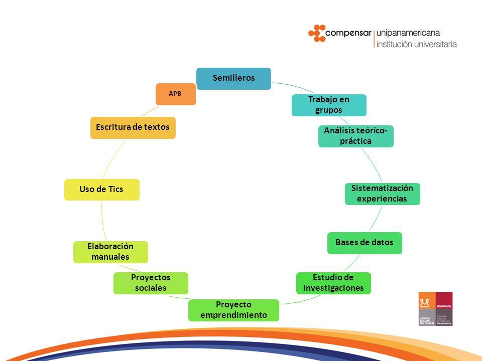 Semilleros Trabajo en grupos Análisis teórico- práctica Sistematización experiencias Bases de datos Estudio de investigaciones Proyecto emprendimiento