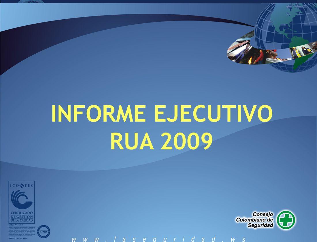 INFORME EJECUTIVO RUA 2009