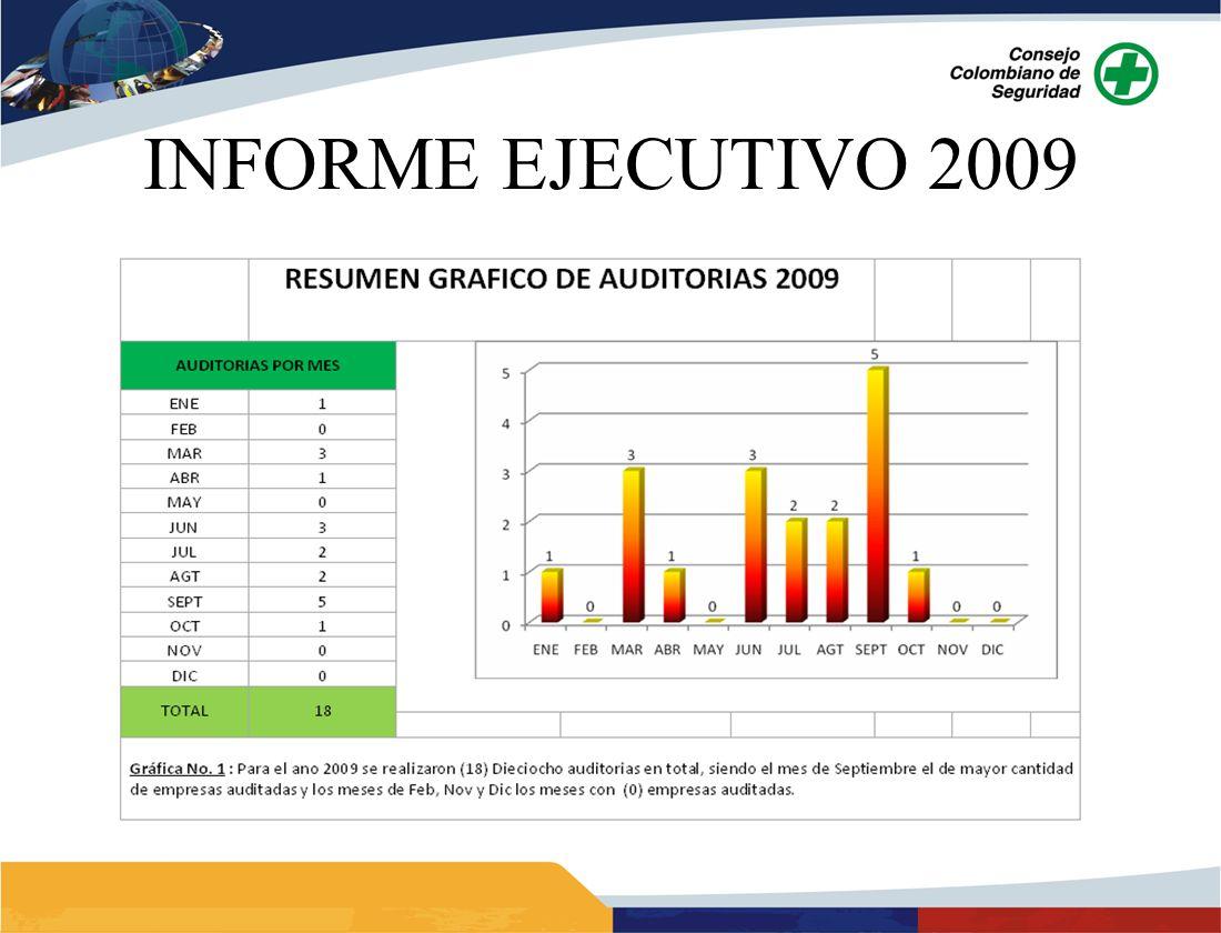 INFORME EJECUTIVO 2009