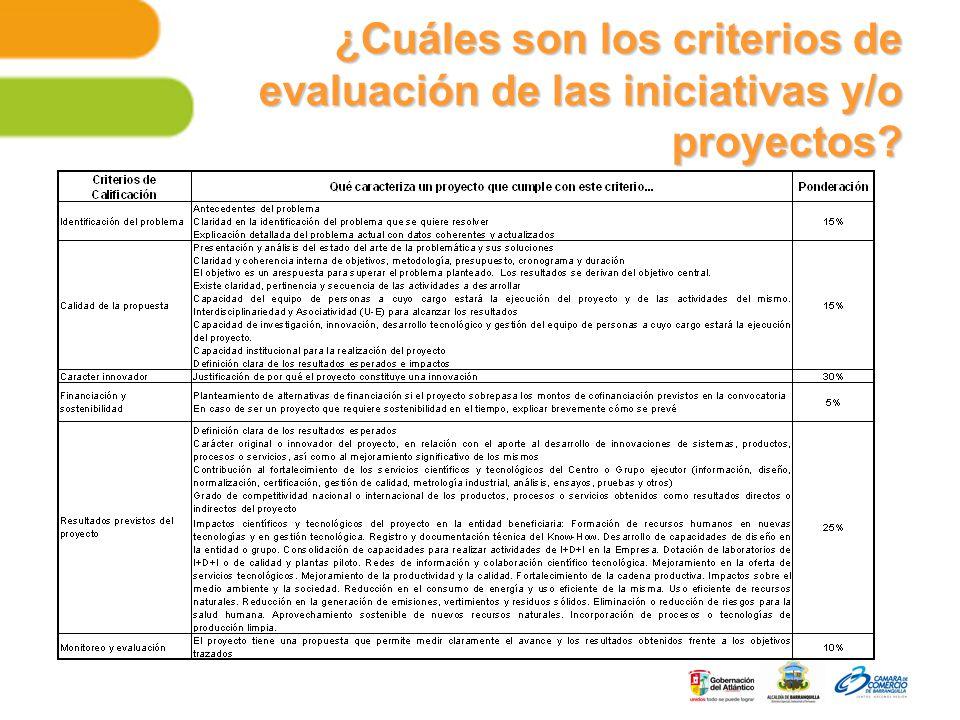 ¿Cuáles son los criterios de evaluación de las iniciativas y/o proyectos?
