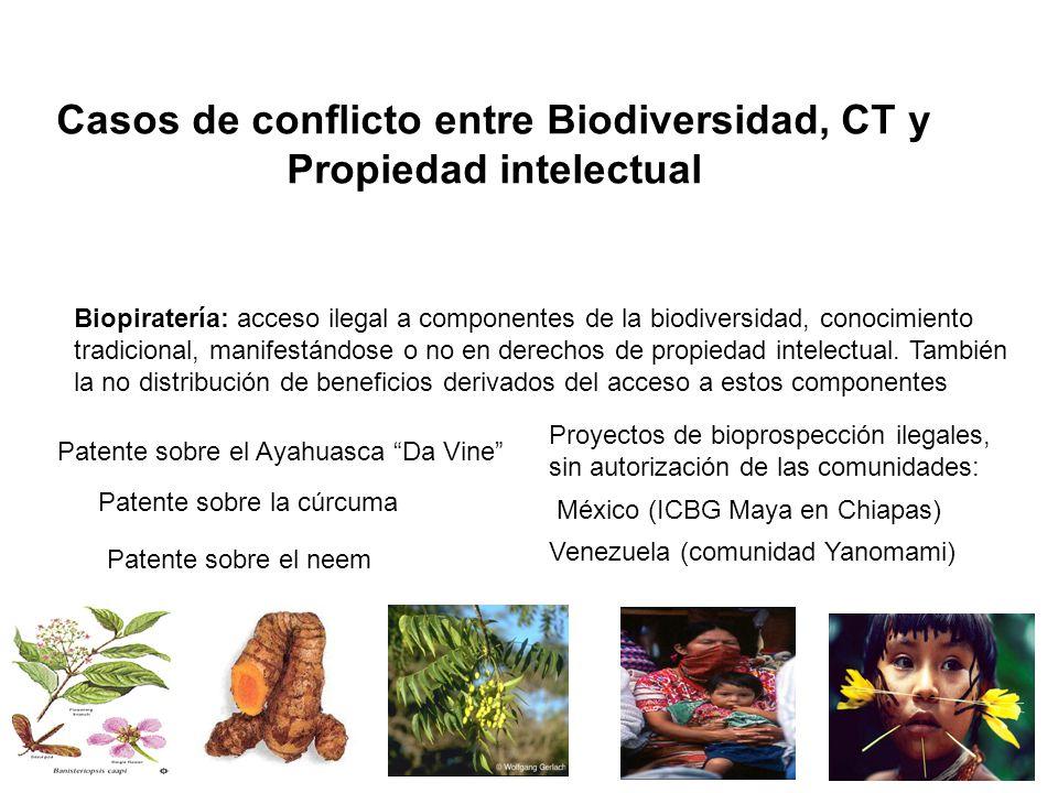 Casos de conflicto entre Biodiversidad, CT y Propiedad intelectual Biopiratería: acceso ilegal a componentes de la biodiversidad, conocimiento tradici