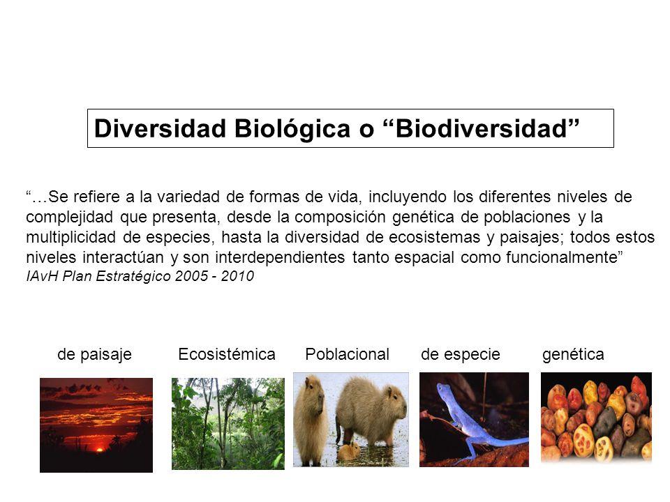 Diversidad Biológica o Biodiversidad …Se refiere a la variedad de formas de vida, incluyendo los diferentes niveles de complejidad que presenta, desde