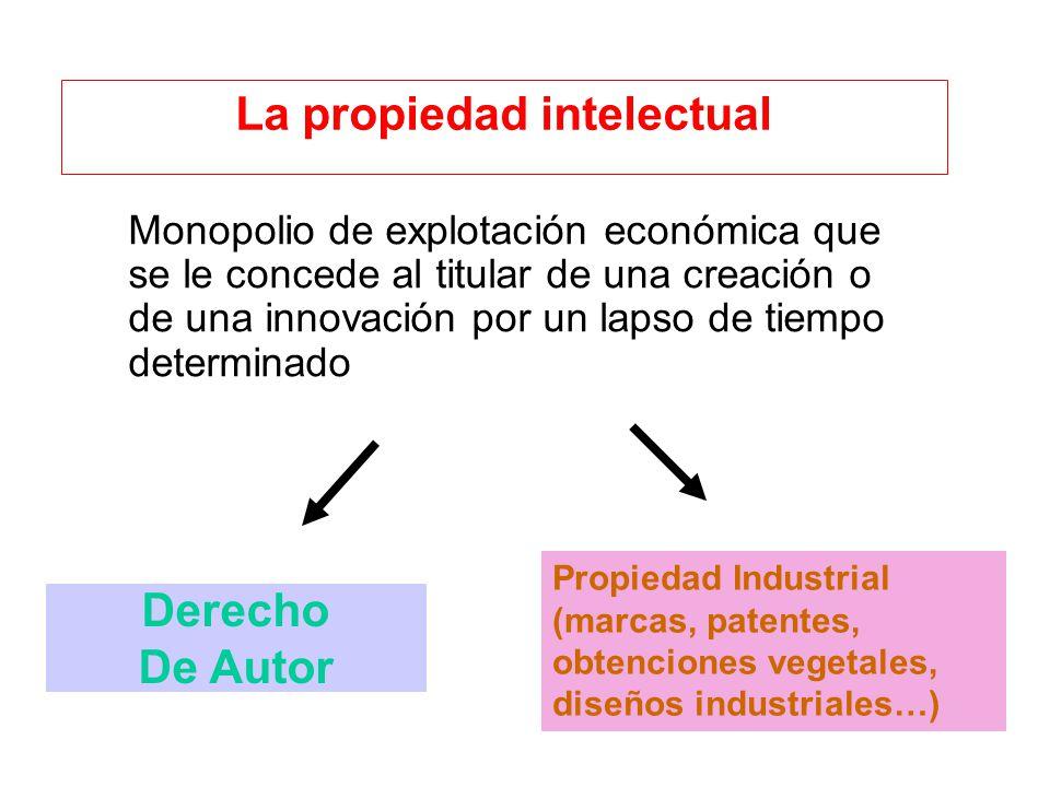 Monopolio de explotación económica que se le concede al titular de una creación o de una innovación por un lapso de tiempo determinado La propiedad in