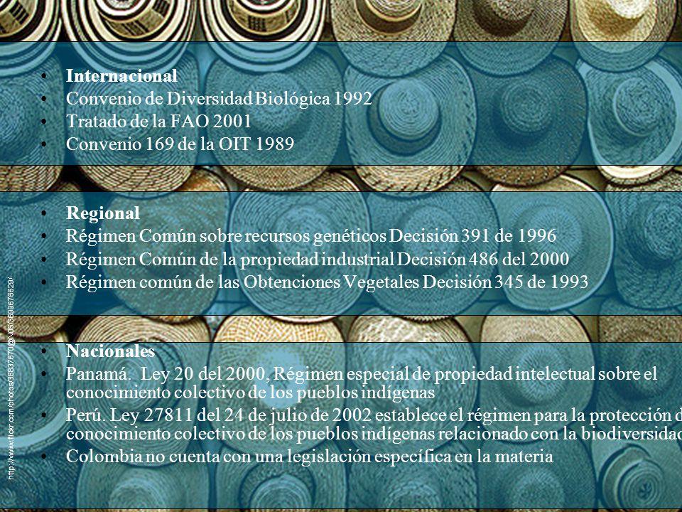 Internacional Convenio de Diversidad Biológica 1992 Tratado de la FAO 2001 Convenio 169 de la OIT 1989 Regional Régimen Común sobre recursos genéticos