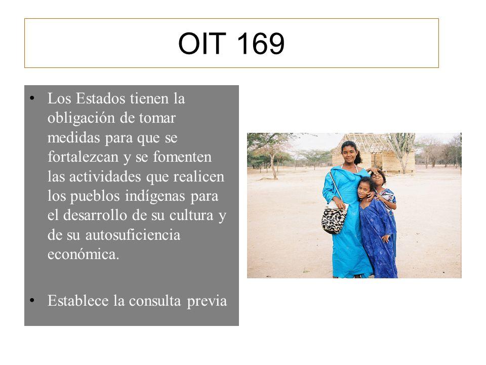 OIT 169 Los Estados tienen la obligación de tomar medidas para que se fortalezcan y se fomenten las actividades que realicen los pueblos indígenas par