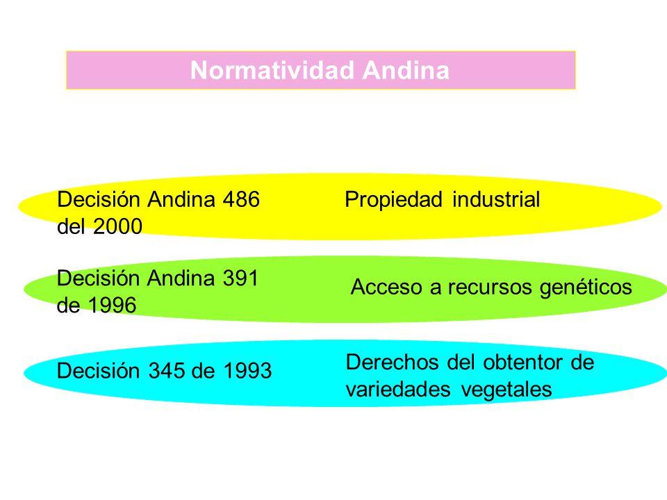 Decisión Andina 486 del 2000 Propiedad industrial Decisión Andina 391 de 1996 Acceso a recursos genéticos Decisión 345 de 1993 Derechos del obtentor d