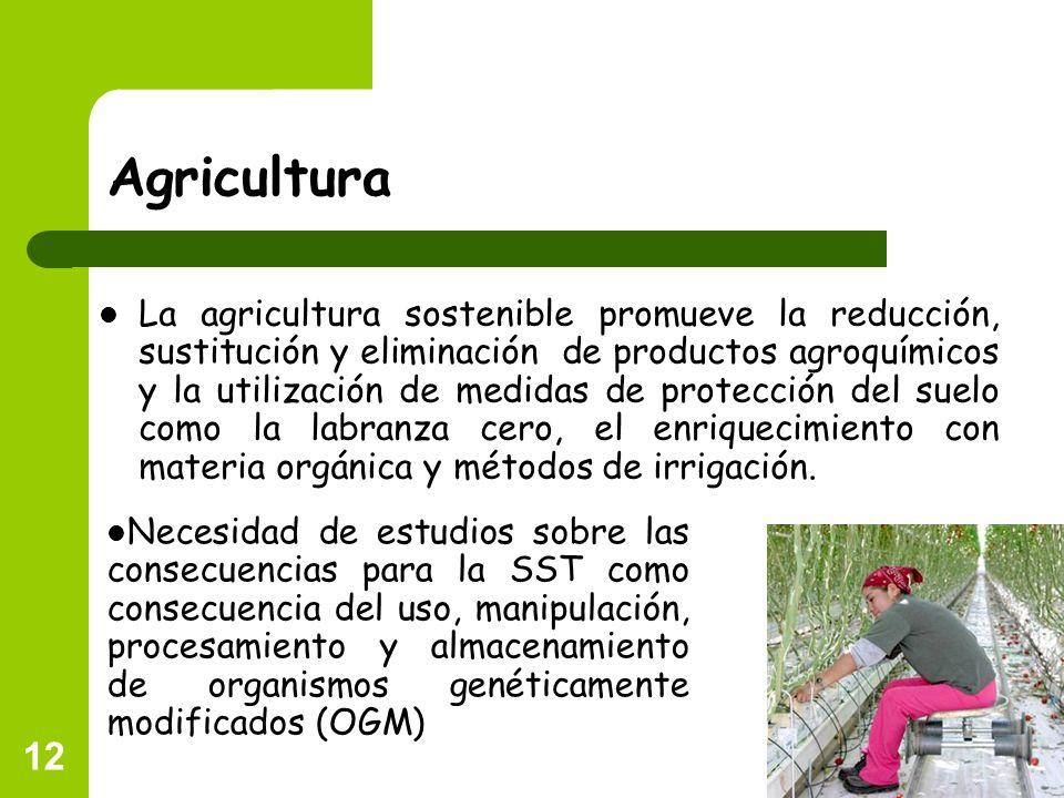12 Agricultura La agricultura sostenible promueve la reducción, sustitución y eliminación de productos agroquímicos y la utilización de medidas de pro