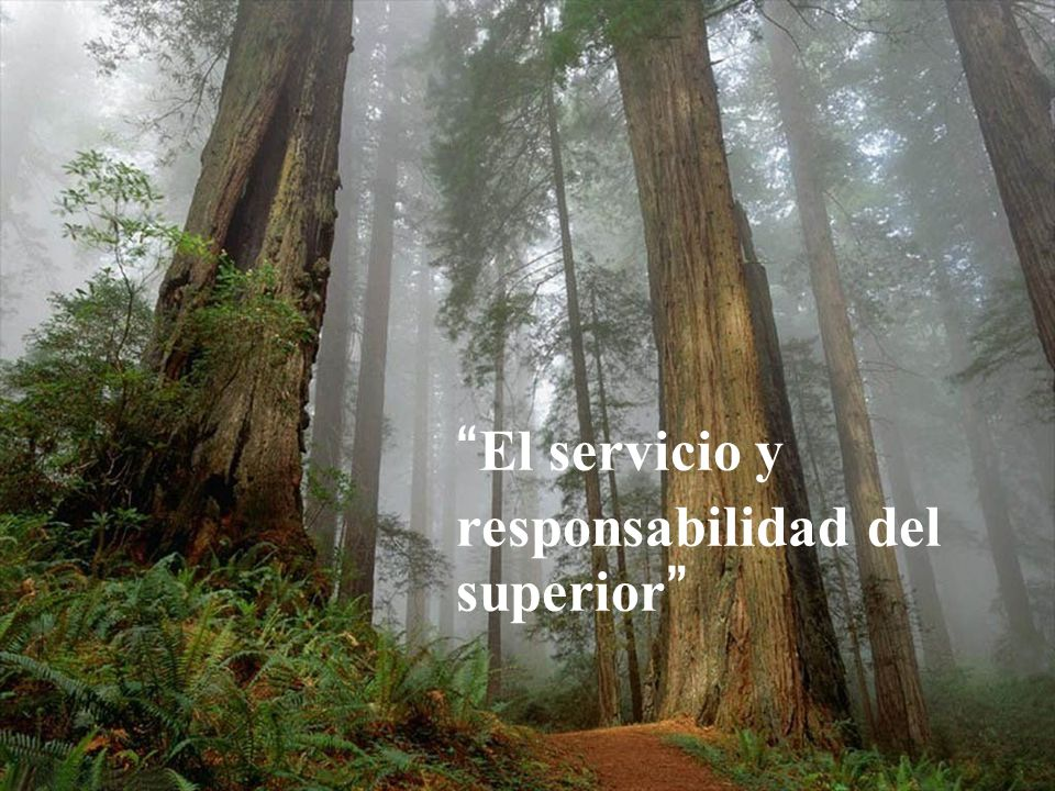 El servicio y responsabilidad del superior