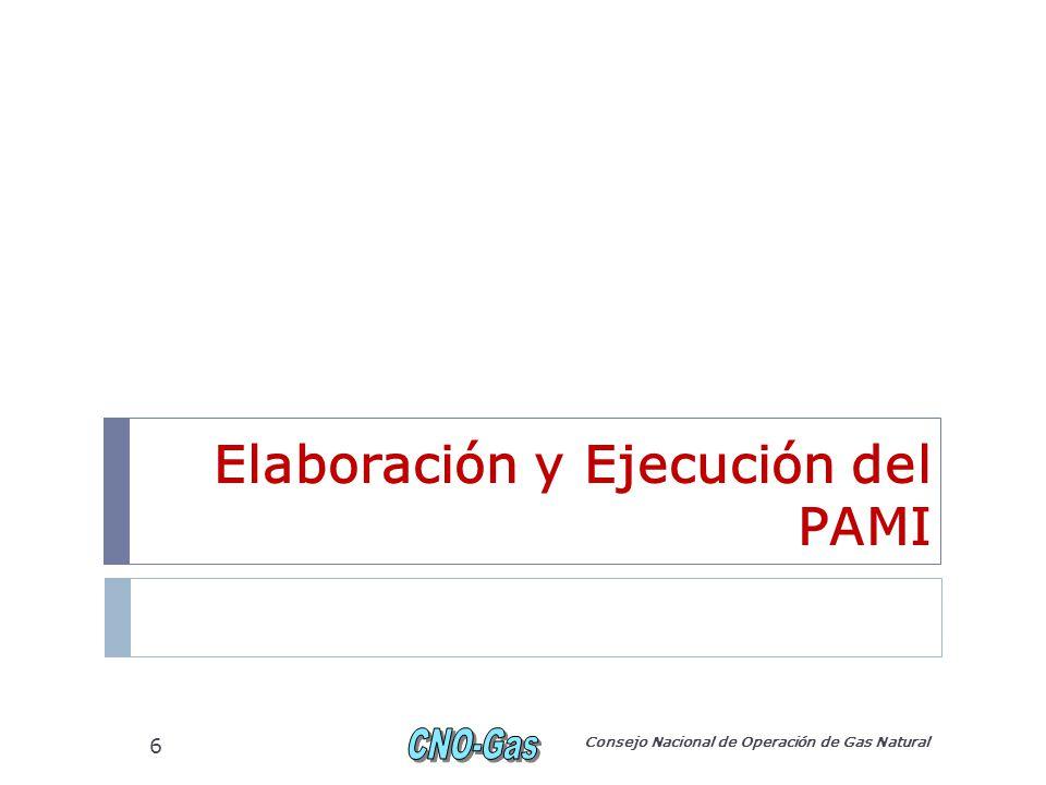 Elaboración y Ejecución del PAMI Consejo Nacional de Operación de Gas Natural 6