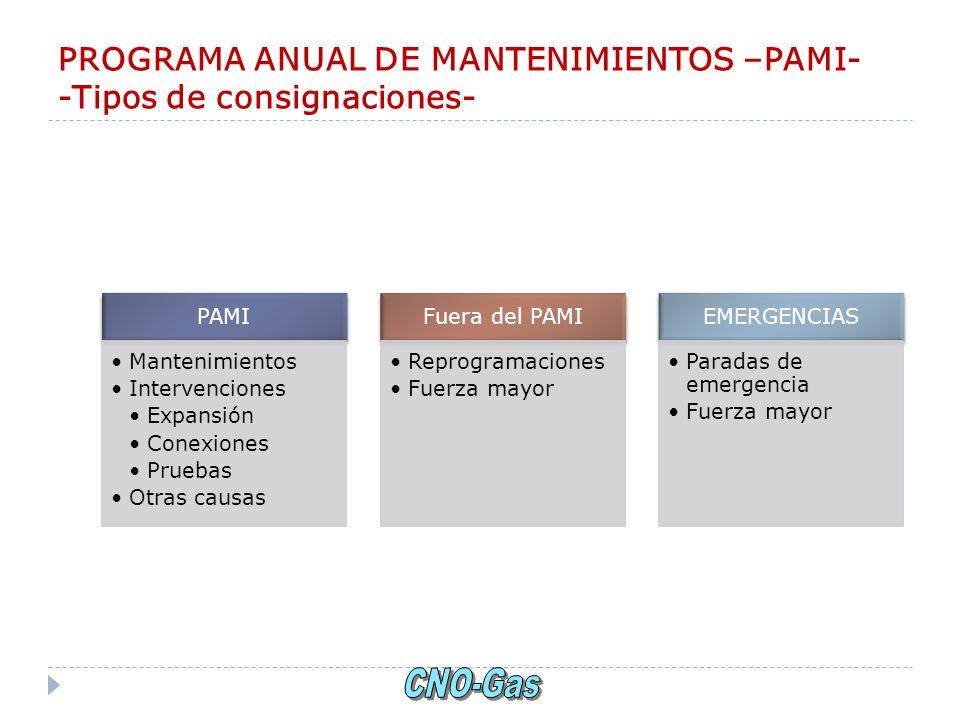 PROGRAMA ANUAL DE MANTENIMIENTOS –PAMI- -Tipos de consignaciones- PAMI Mantenimientos Intervenciones Expansión Conexiones Pruebas Otras causas Fuera d