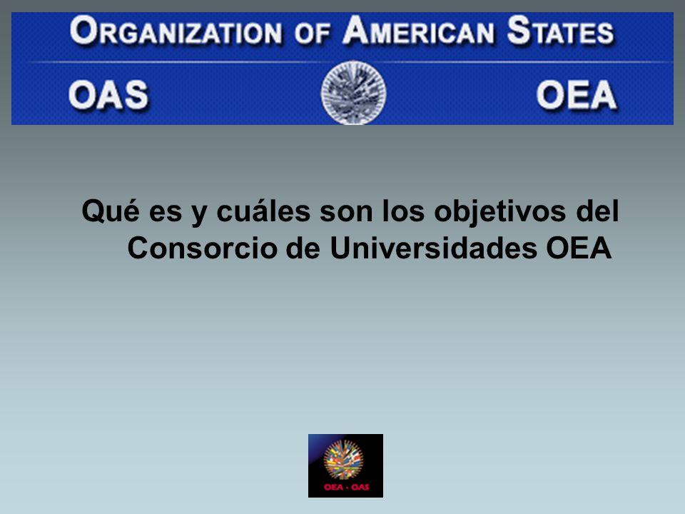 Qué es y cuáles son los objetivos del Consorcio de Universidades OEA
