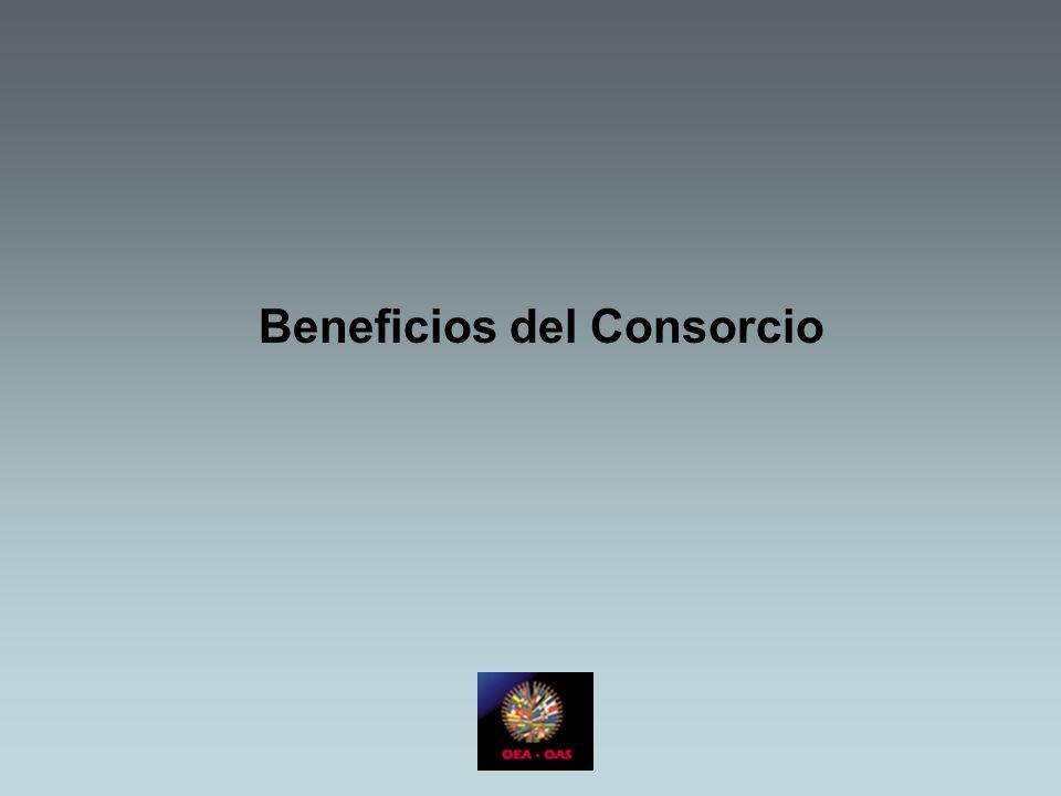Beneficios del Consorcio