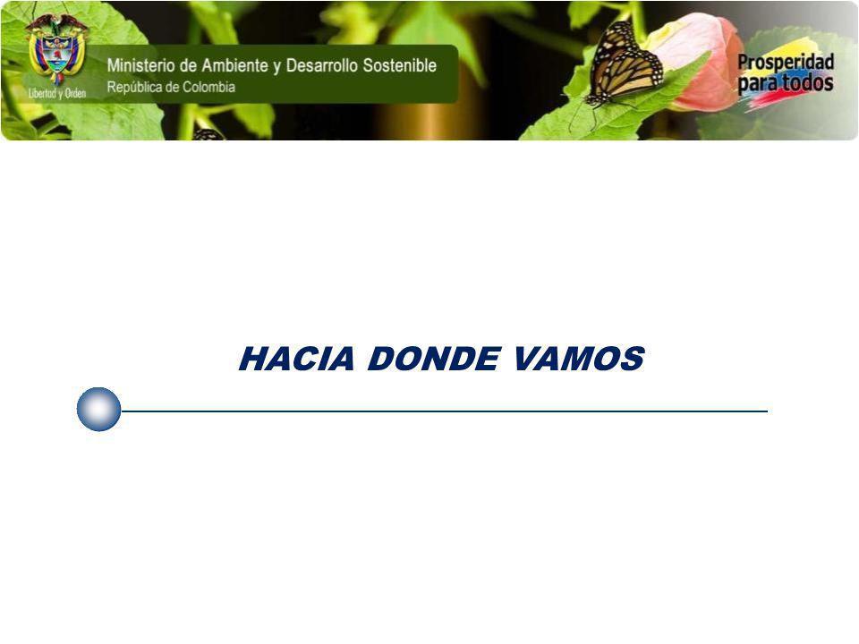 HACIA DONDE VAMOS