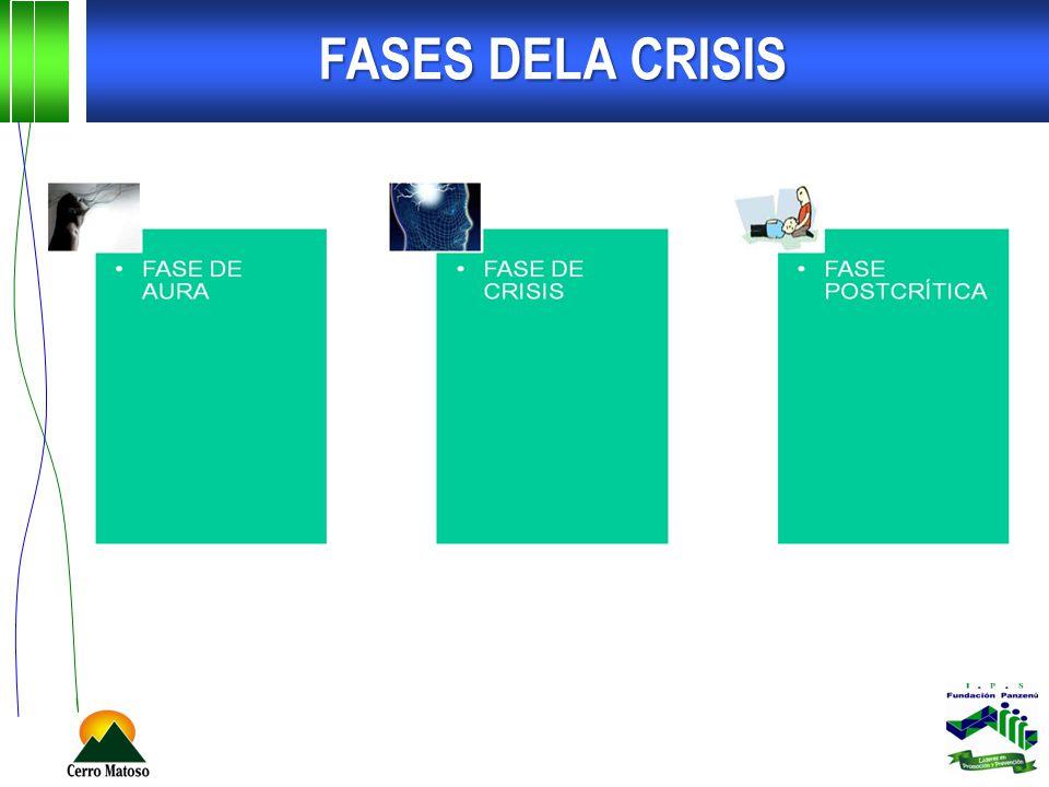 FASES DELA CRISIS