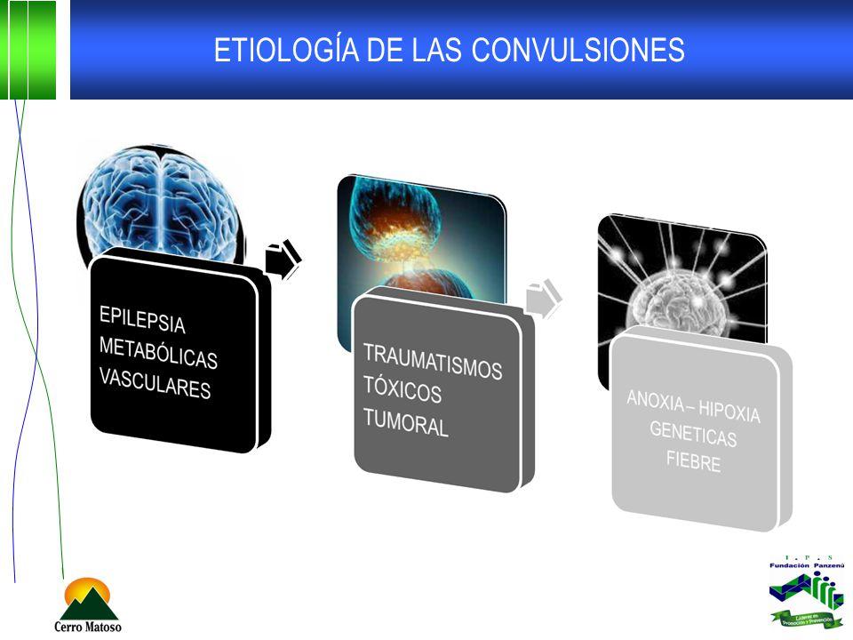 ETIOLOGÍA DE LAS CONVULSIONES