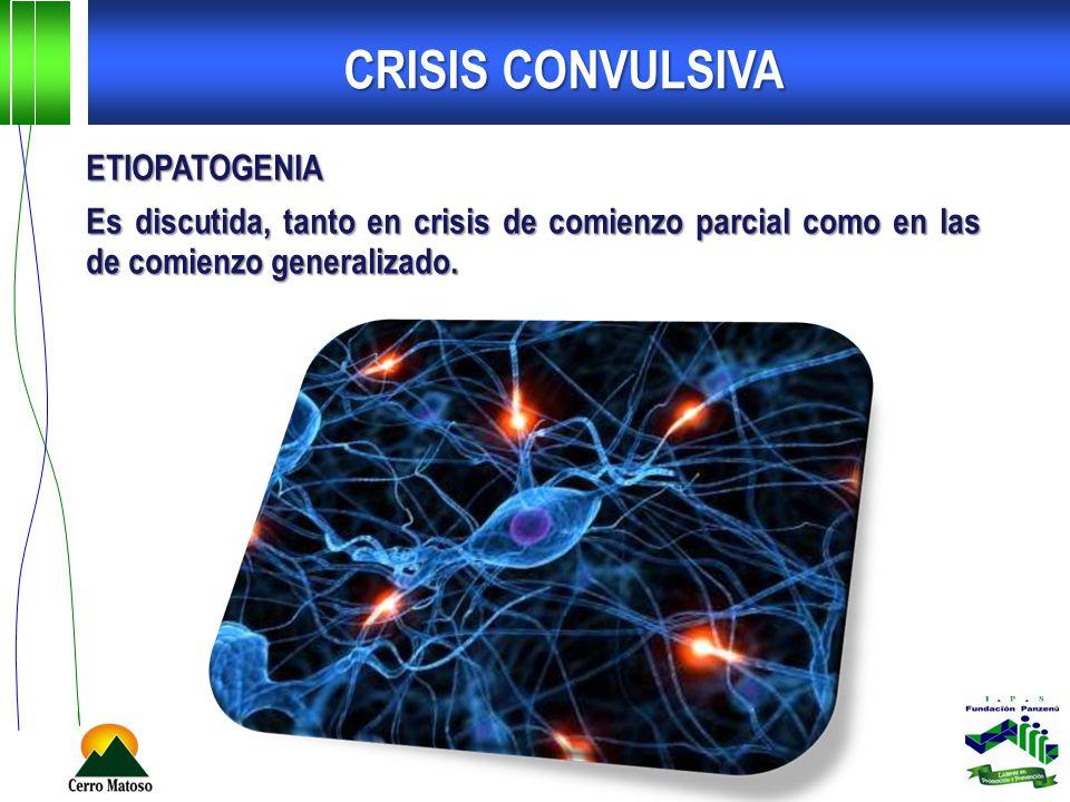 ETIOPATOGENIA Es discutida, tanto en crisis de comienzo parcial como en las de comienzo generalizado. CRISIS CONVULSIVA