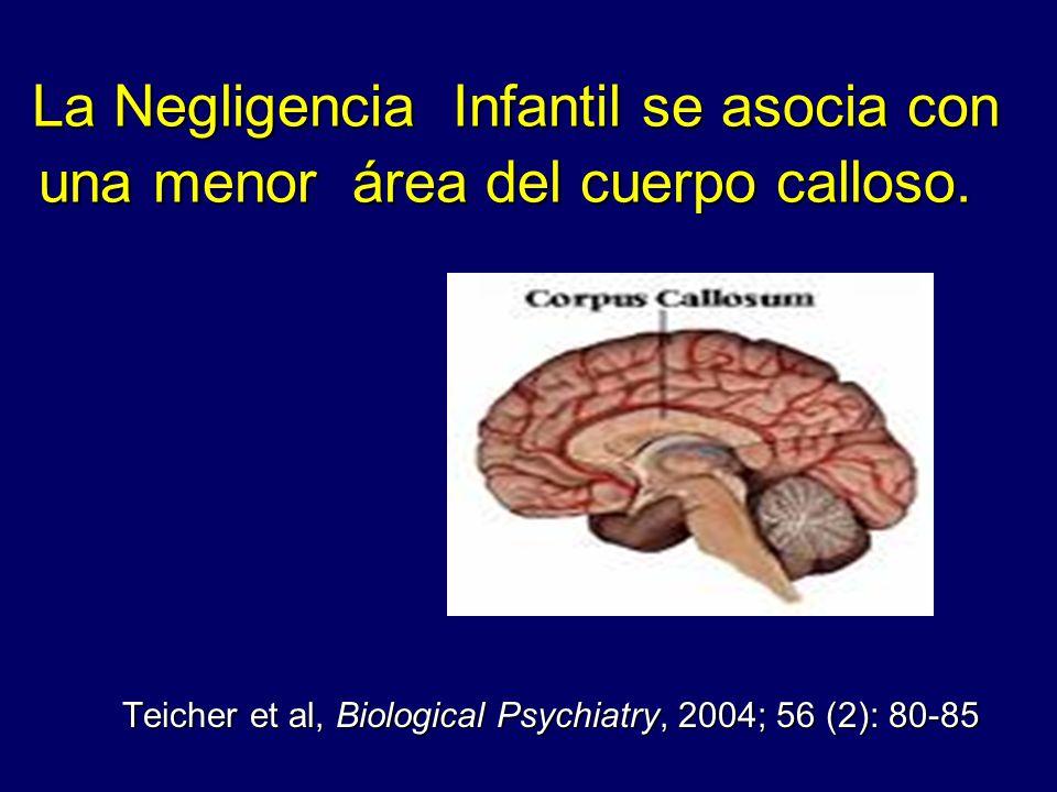 La Negligencia Infantil se asocia con una menor área del cuerpo calloso. La Negligencia Infantil se asocia con una menor área del cuerpo calloso. Teic
