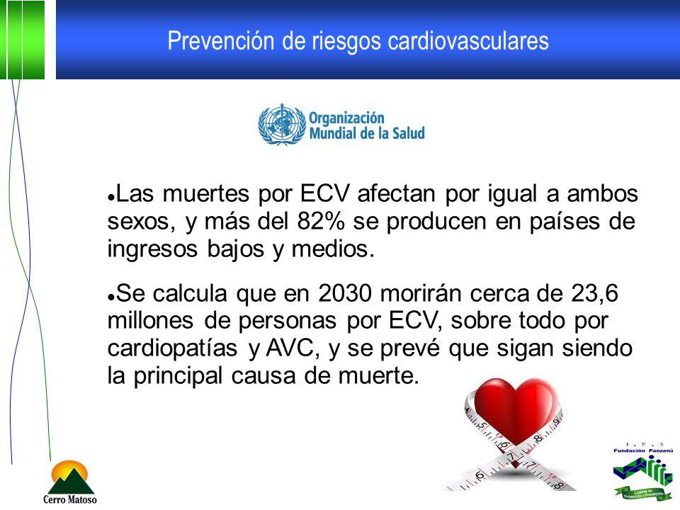 Prevención de riesgos cardiovasculares Las muertes por ECV afectan por igual a ambos sexos, y más del 82% se producen en países de ingresos bajos y me