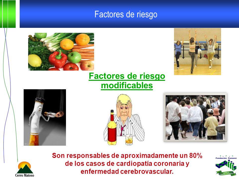 Factores de riesgo Factores de riesgo modificables Son responsables de aproximadamente un 80% de los casos de cardiopatía coronaria y enfermedad cerebrovascular.