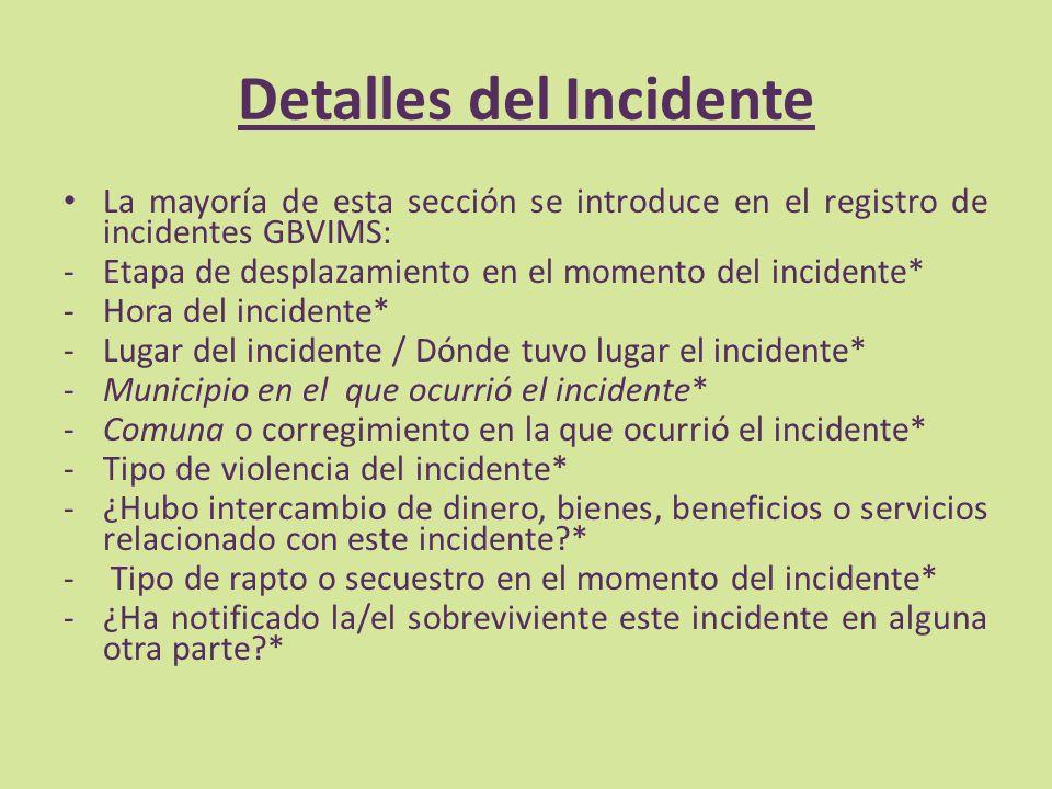 Detalles del Incidente La mayoría de esta sección se introduce en el registro de incidentes GBVIMS: -Etapa de desplazamiento en el momento del inciden