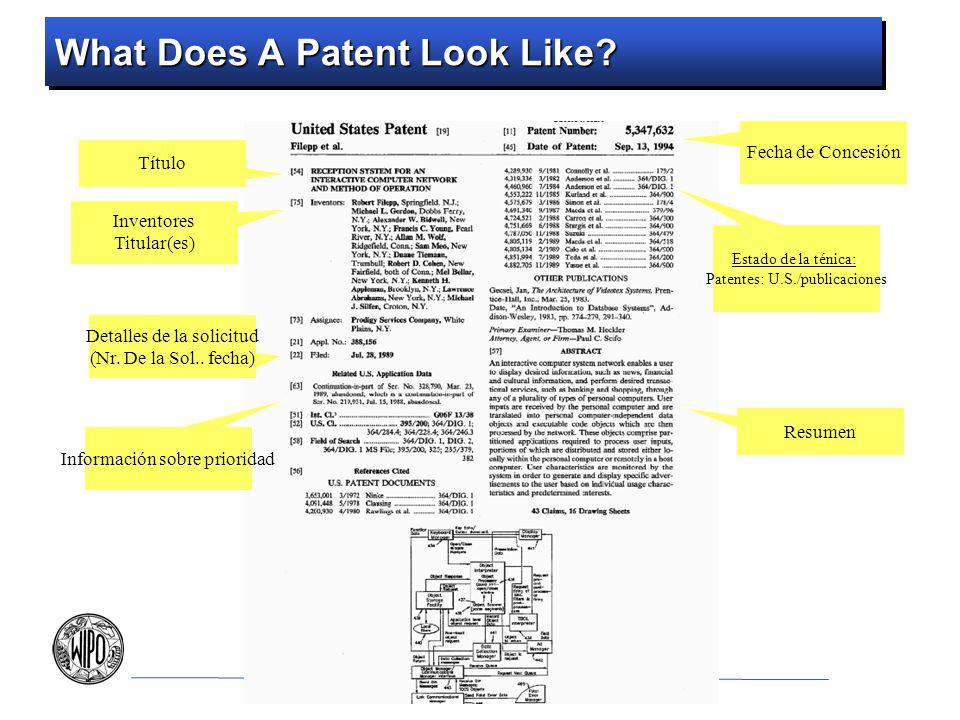 What Does A Patent Look Like? Fecha de Concesión Estado de la ténica: Patentes: U.S./publicaciones Información sobre prioridad Detalles de la solicitu