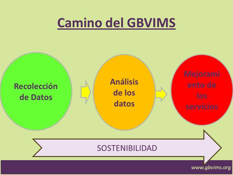 www.gbvims.org Cuidado… Siempre decir a qué corresponden las cifras.