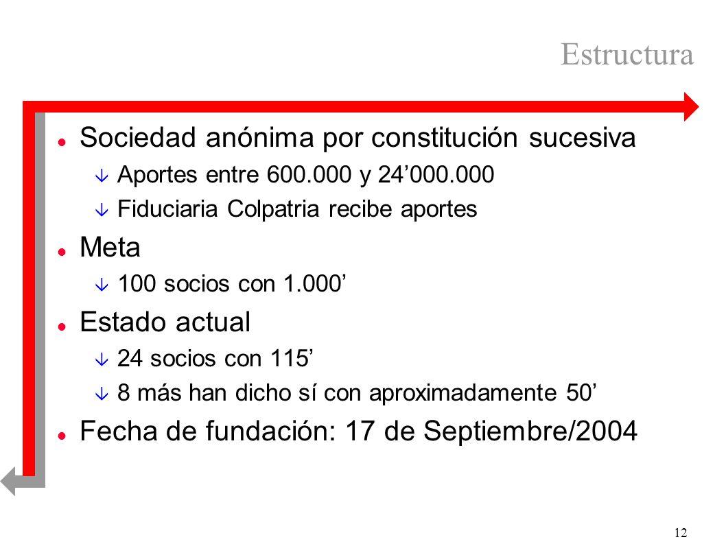 12 Estructura l Sociedad anónima por constitución sucesiva â Aportes entre 600.000 y 24000.000 â Fiduciaria Colpatria recibe aportes l Meta â 100 soci