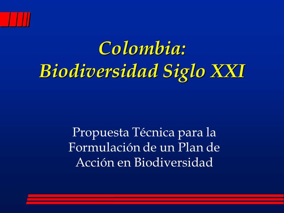 Entidades que lideran el proceso l Instituto Alexander von Humboldt l Ministerio del Medio Ambiente l Departamento Nacional de Planeación l Global Environment Facility (GEF) l PNUMA y PNUD l UICN