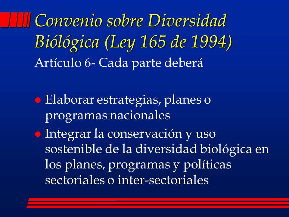 Resultados alcanzados l Política Nacional de Biodiversidad (1996) l Informe de Colombia ante el Convenio (1998) l Informe sobre el Estado de la Biodiversidad l Plan de Acción en Biodiversidad