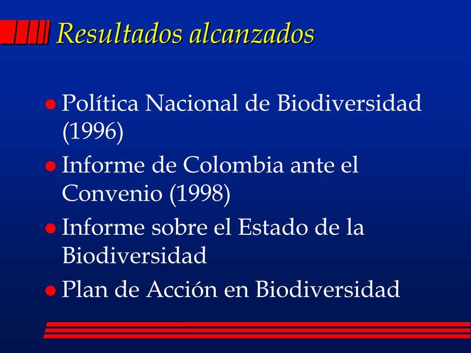 Proyecto de Plan de Acción l Fase I (Instituto Humboldt) –Elaboración de una propuesta técnica para la formulación de un plan de acción en biodiversidad l Fase II (Minambiente) –Concertación, aprobación e implementación del Plan de Acción en Biodiversidad