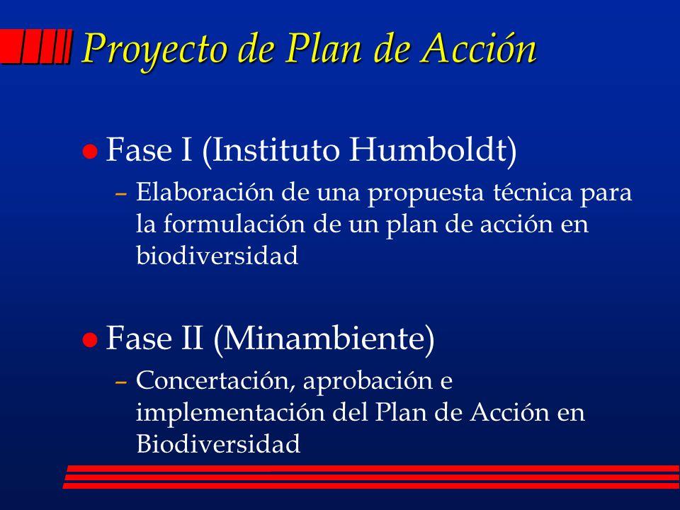 Caracterización (Metas) l Sistematizar 90% de las colecciones biológicas de Colombia l Fortalecer al menos dos revistas nacionales l Establecer una red de cuatro estaciones de investigación en ecosistemas l Elaborar un informe periódico sobre el estado de la biodiversidad