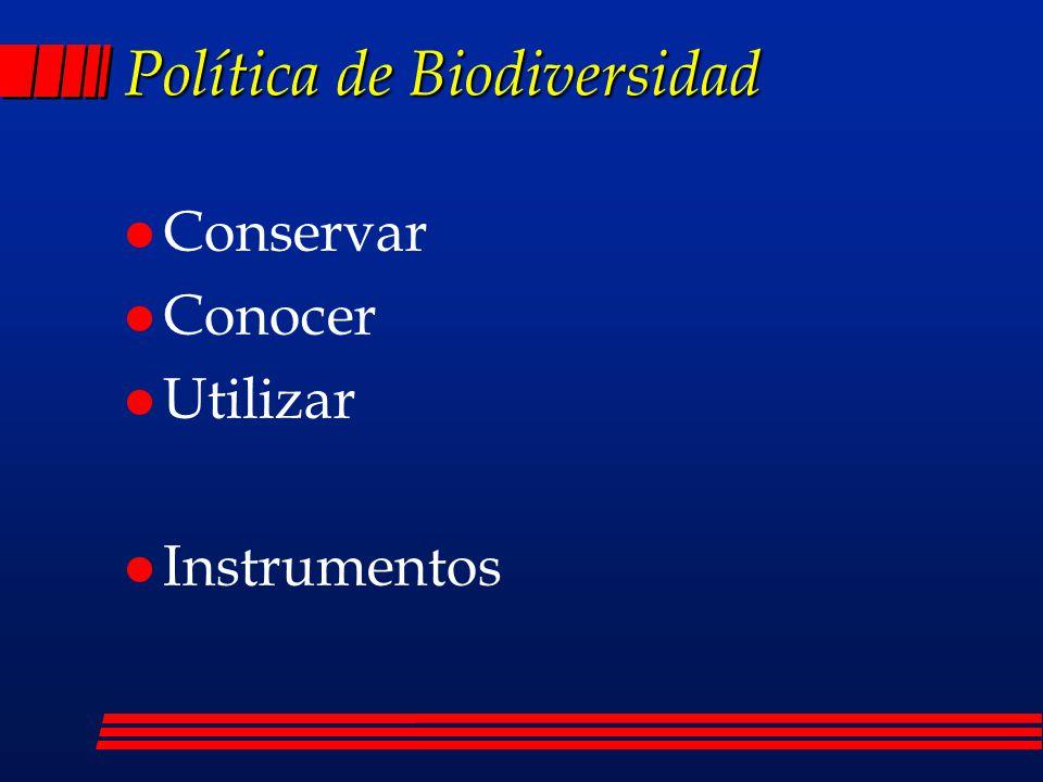 CONSERVAR l Conformación y consolidación de un sistema de áreas naturales protegidas l Reducción de los procesos de deterioro l Promoción de la conservación ex situ l Restauración de ecosistemas y recuperación de especies