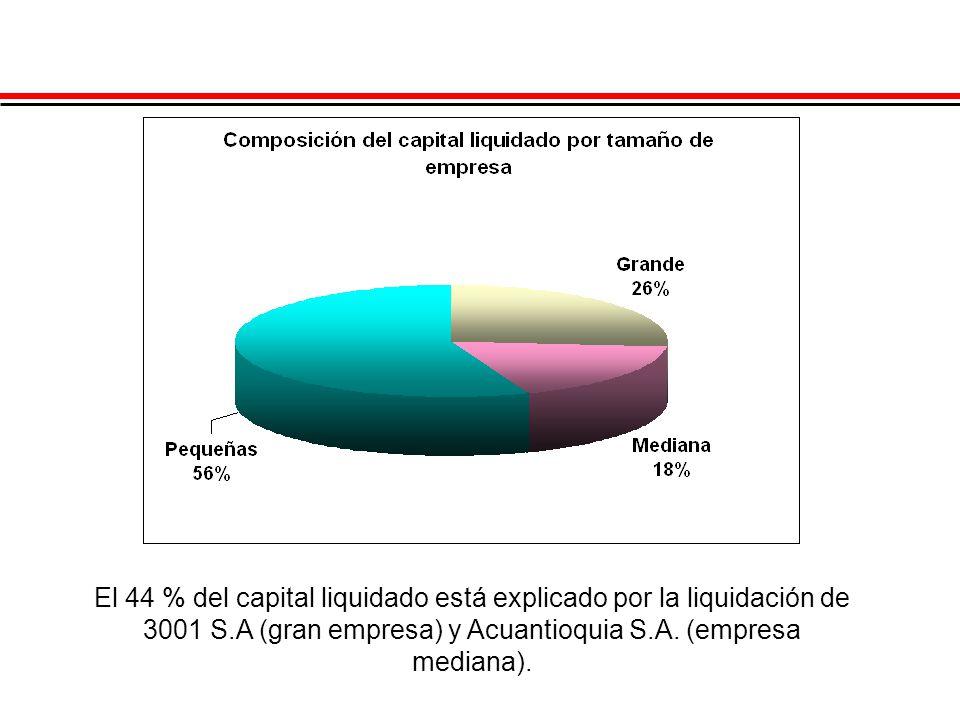 El 44 % del capital liquidado está explicado por la liquidación de 3001 S.A (gran empresa) y Acuantioquia S.A. (empresa mediana).
