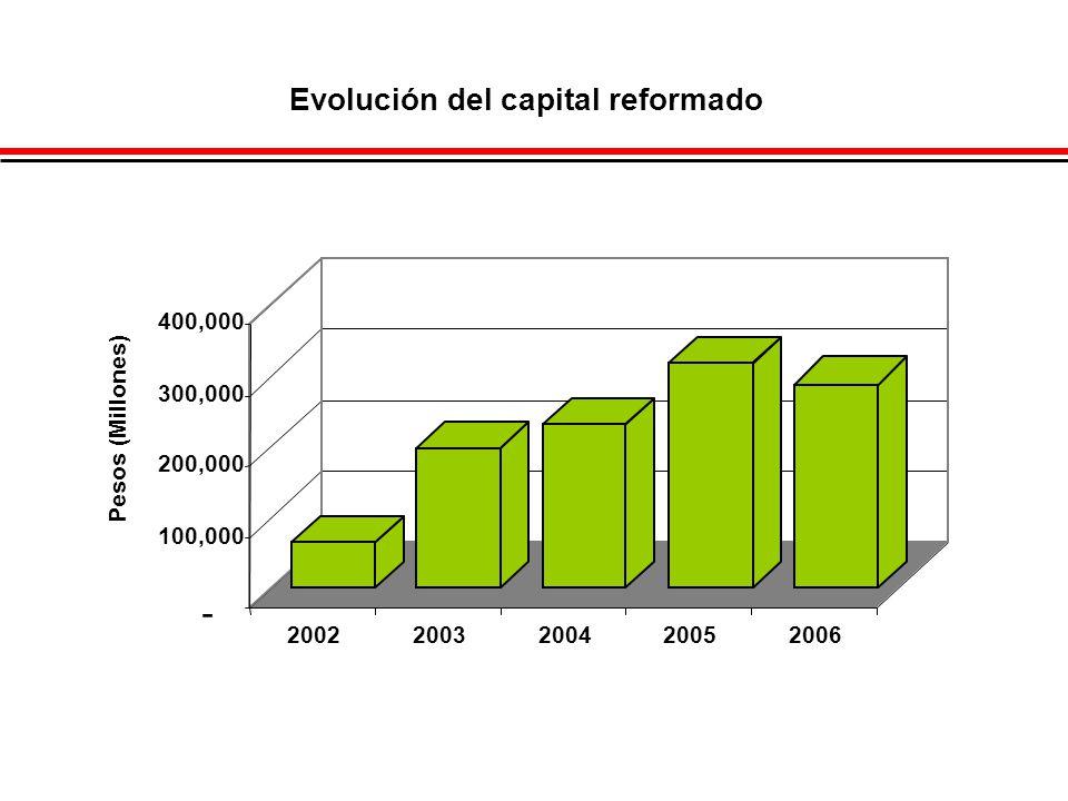 - 100,000 200,000 300,000 400,000 Pesos (Millones) 20022003200420052006 Evolución del capital reformado