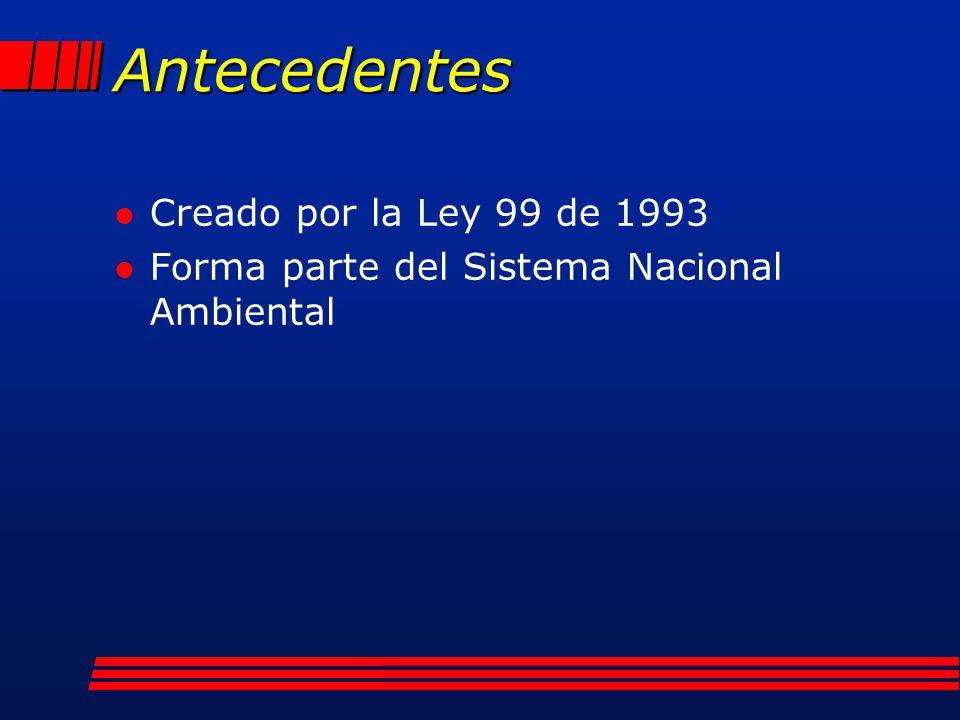Antecedentes l Creado por la Ley 99 de 1993 l Forma parte del Sistema Nacional Ambiental