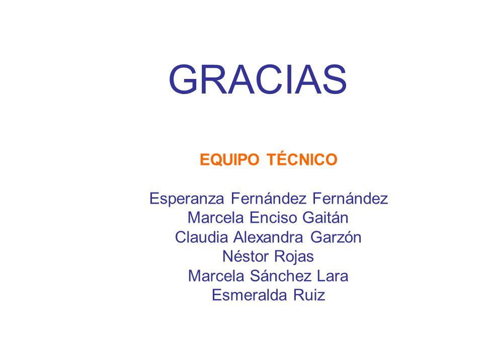GRACIAS EQUIPO TÉCNICO Esperanza Fernández Fernández Marcela Enciso Gaitán Claudia Alexandra Garzón Néstor Rojas Marcela Sánchez Lara Esmeralda Ruiz