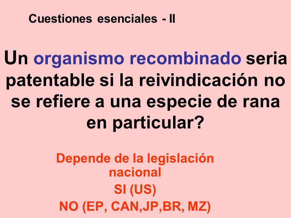 U n organismo recombinado seria patentable si la reivindicación no se refiere a una especie de rana en particular? Depende de la legislación nacional