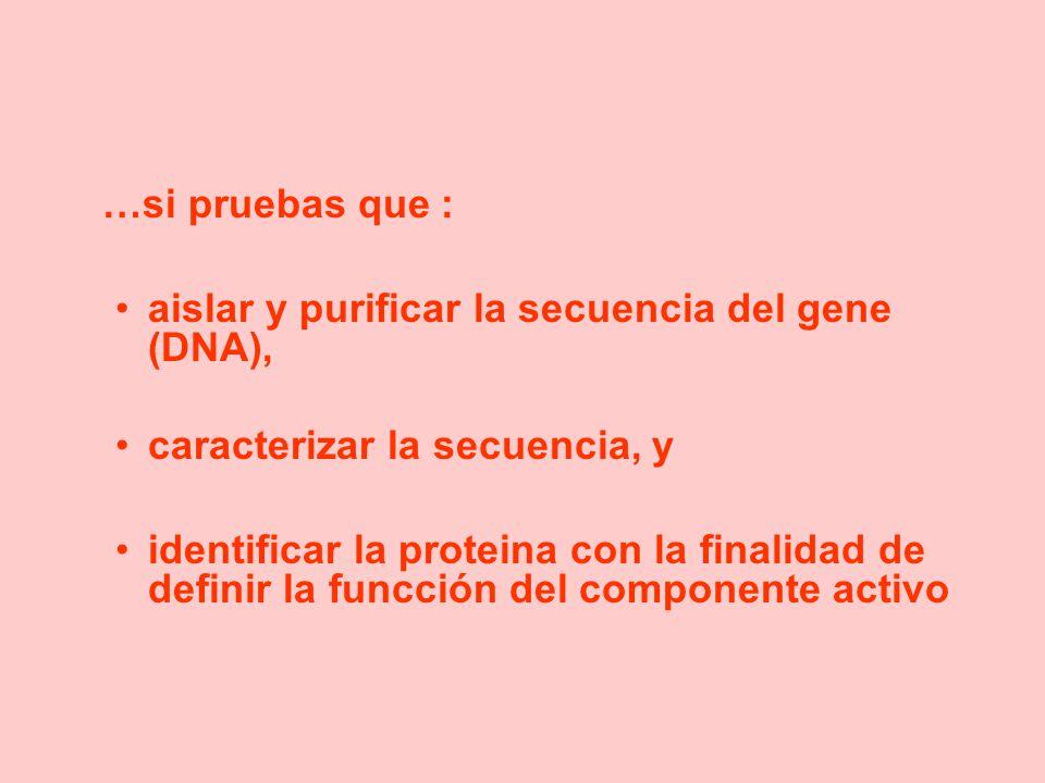 …si pruebas que : aislar y purificar la secuencia del gene (DNA), caracterizar la secuencia, y identificar la proteina con la finalidad de definir la funcción del componente activo