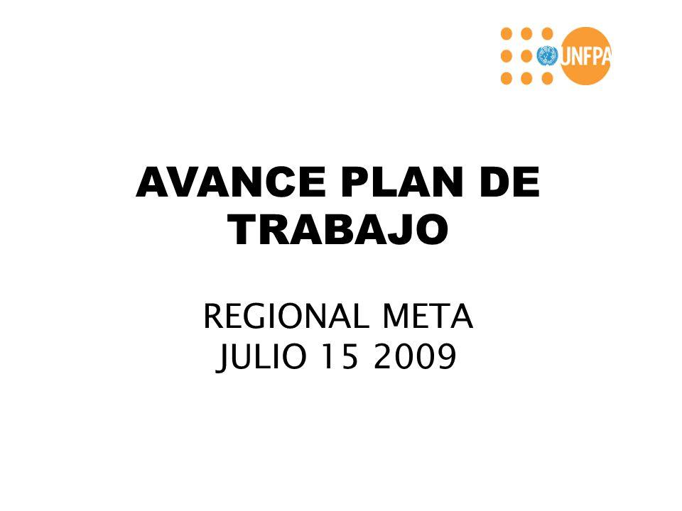 AVANCE PLAN DE TRABAJO REGIONAL META JULIO 15 2009