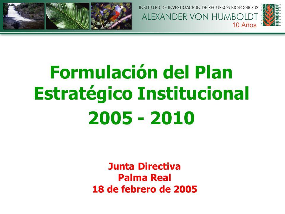 Formulación del Plan Estratégico Institucional 2005 - 2010 Junta Directiva Palma Real 18 de febrero de 2005